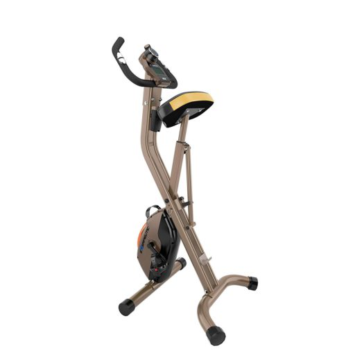 Exerpeutic Gold 500 XLS