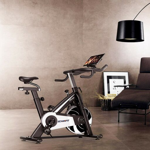 ECHANFIT CBK 1901 Indoor Bike