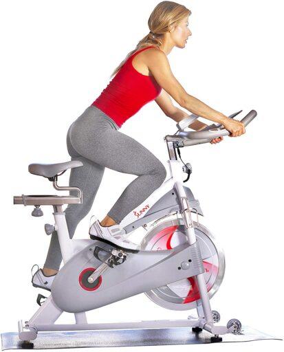 Sunny Indoor Cycling Bike SF-B1876